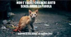 4 ottobre 2017: LA GIORNATA DEL DONO