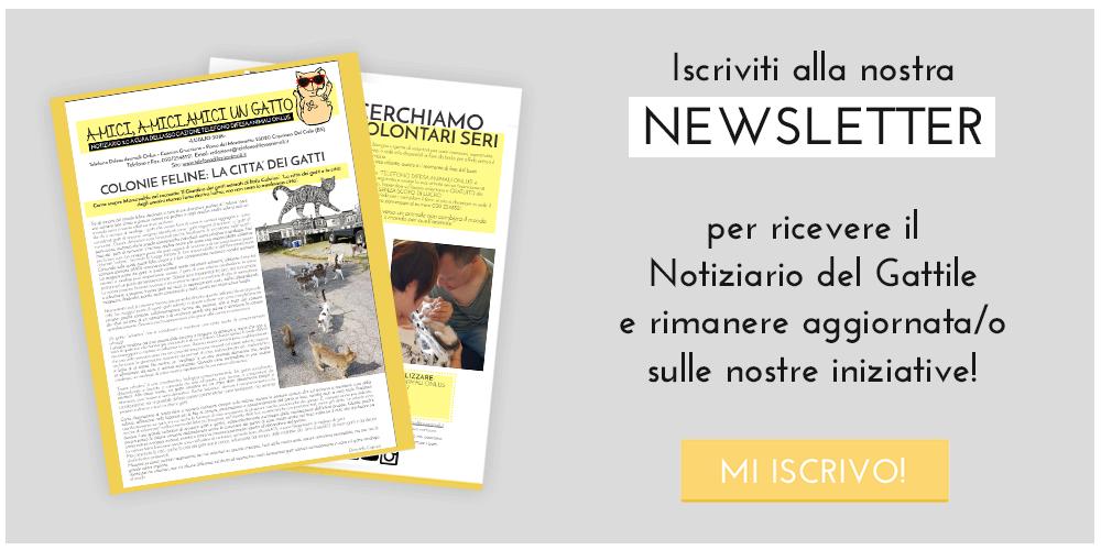Iscrizione newsletter Telefono Difesa Animali