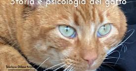 STORIA, PSICOLOGIA E MOLTO ALTRO SUL GATTO – 1