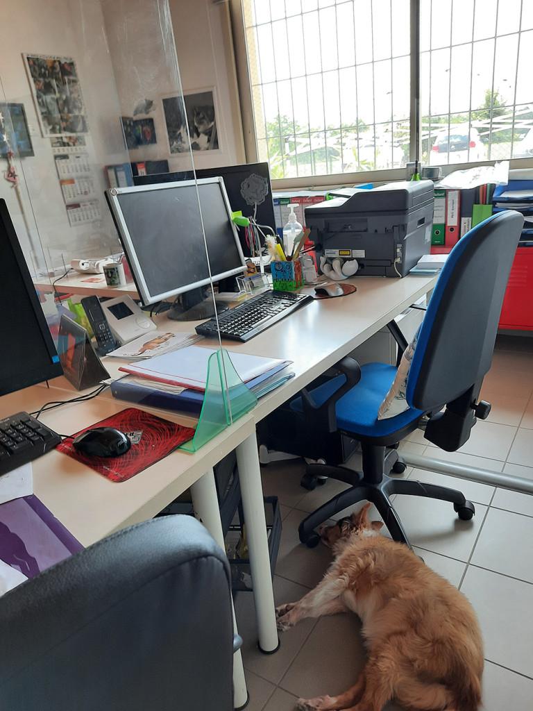 2-ufficio-3