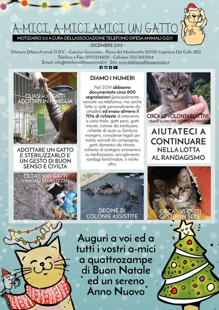 Notiziario-gattile-dicembre-sito