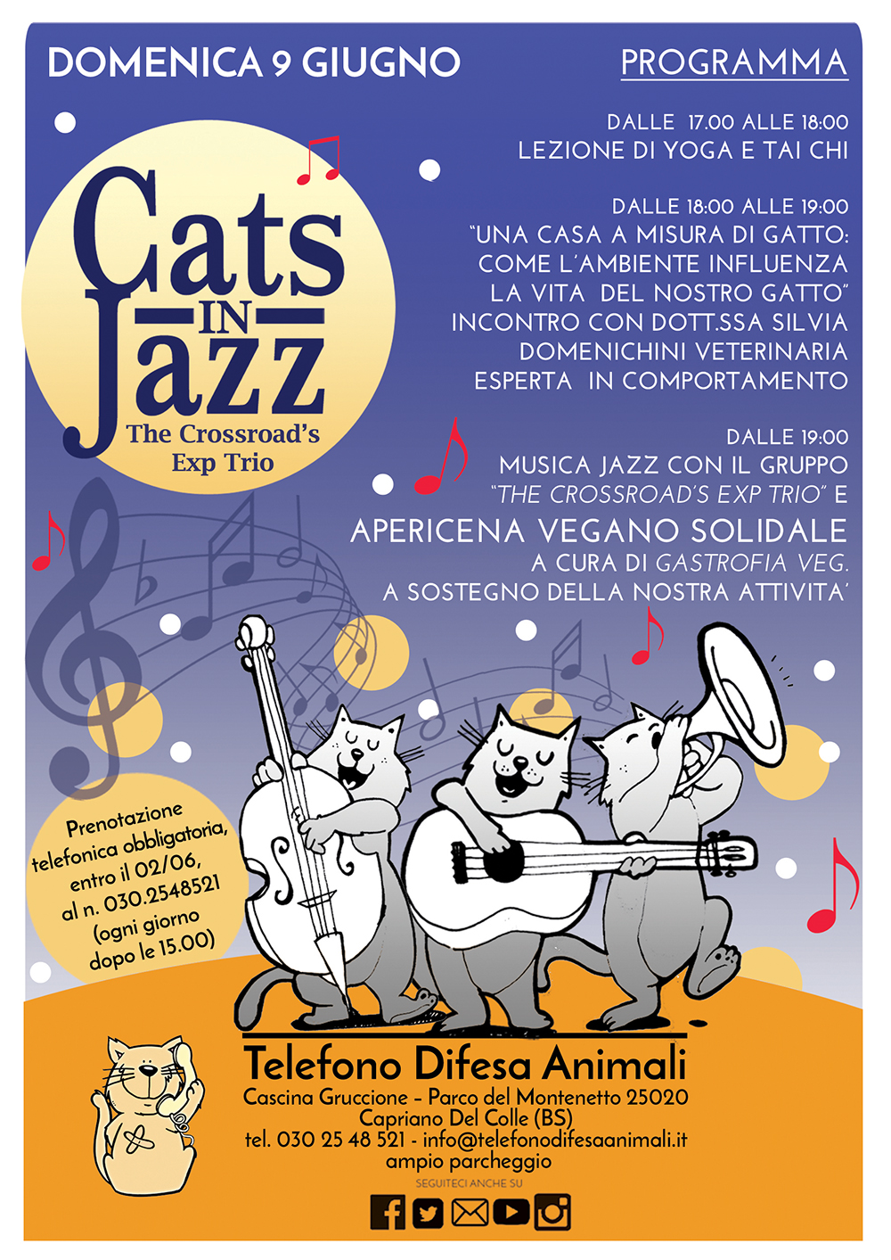 Cats in jazz - apericena solidale in gattile