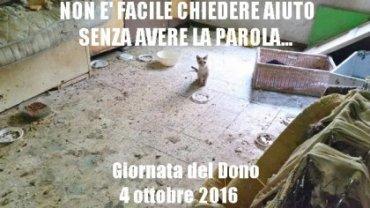 4 ottobre 2016: LA GIORNATA DEL DONO