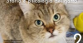 STORIA, PSICOLOGIA E MOLTO ALTRO SUL GATTO – 2