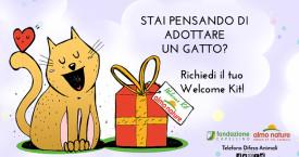 Adotta un gatto: ricevi un Welcome Kit gratuito
