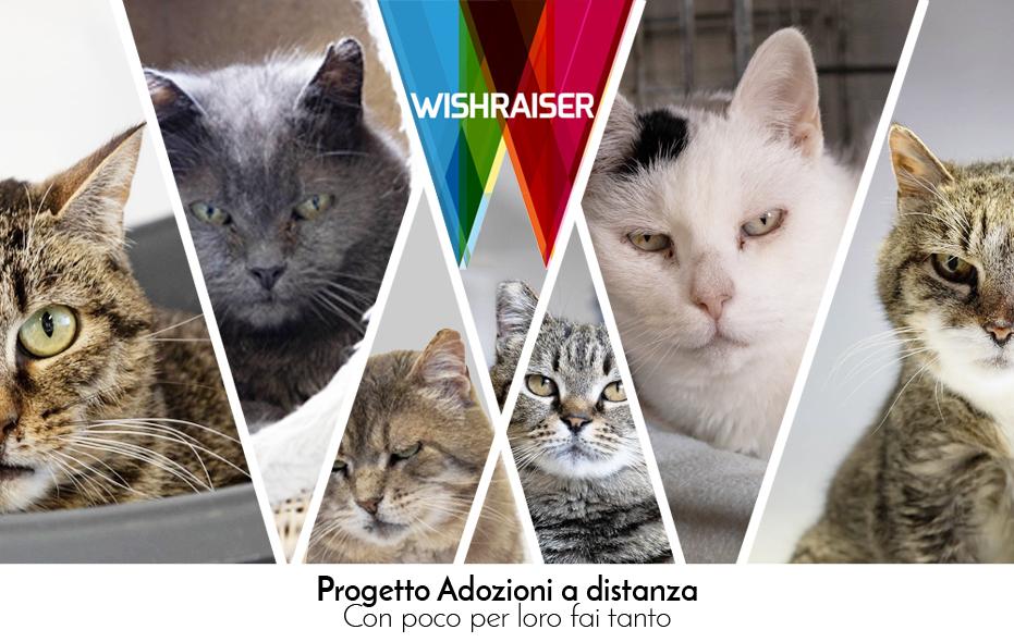 wishraiser-telefono_difesa_animali